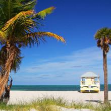 Image for Miami